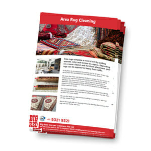 Rug Cleaning Singapore Brochure