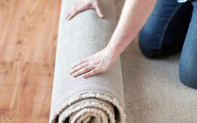 The Cause of Rug Shrinkage