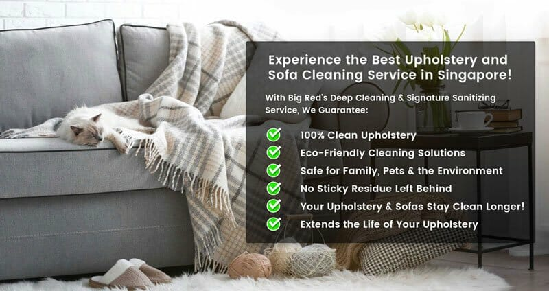 Experience the Best Upholstery Cleaning Singapore Sofa Cleaning Singapore Services by Big Red Carpet Cleaners