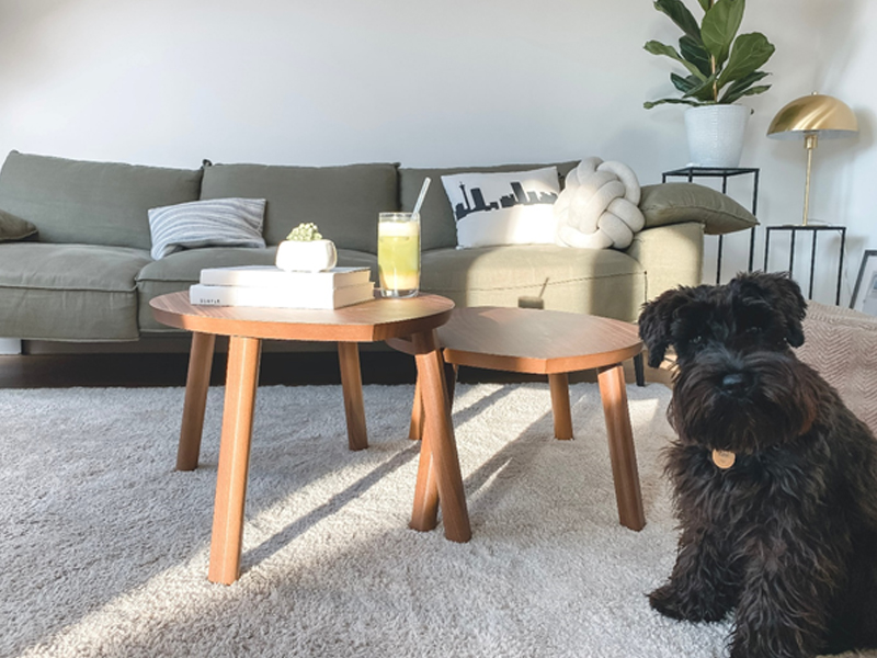 Carpet Cleaning Enzymes - Effortless Cleaning
