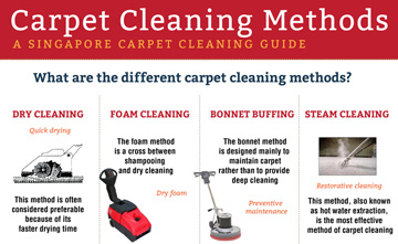 Carpet Cleaning Methods - Big Red Infographic