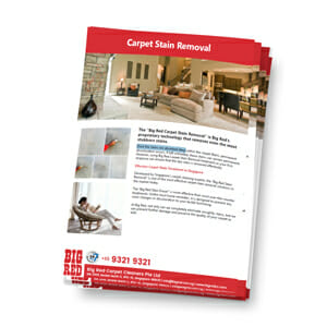 Carpet Stain Removal in Singapore Brochure
