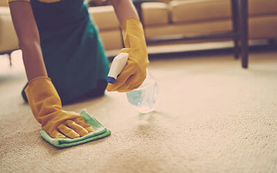 Why Hiring Cheap Carpet Cleaning May be a Mistake