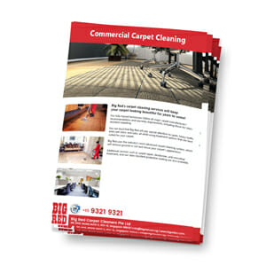 Commercial Carpet Cleaning in Singapore Brochure