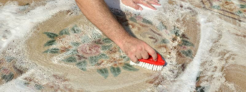 DIY Deep Rug Cleaning - Washing Your Rug