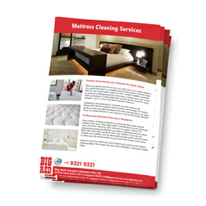 Mattress Cleaning Services in Singapore Brochure