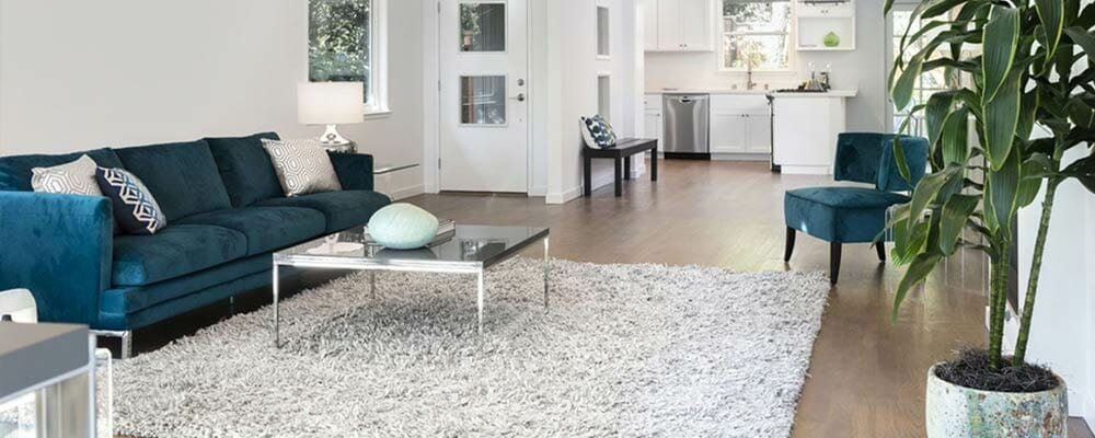 Mistakes to Avoid When Buying Rugs - Living Room