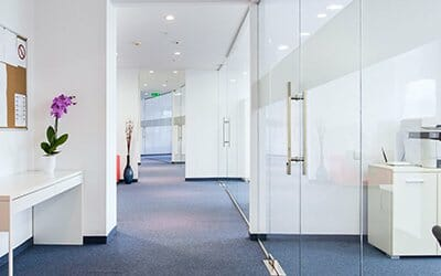 Why You Should Get Your Office Carpets Cleaned Professionally