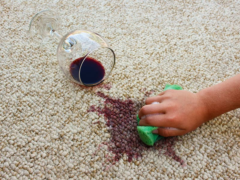 Rug Stain Removal – Dos and Dont's