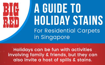 A Guide to Holiday Stains - Infographic - Big Red Carpet Cleaners, Singapore
