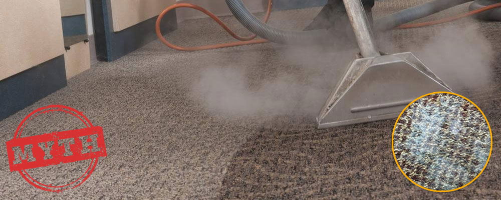 Steam Cleaning May Cause Mold on Carpets - Myth